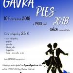 Plagát Gavra ples 2018